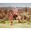 Breyer® Western Horse And Rider