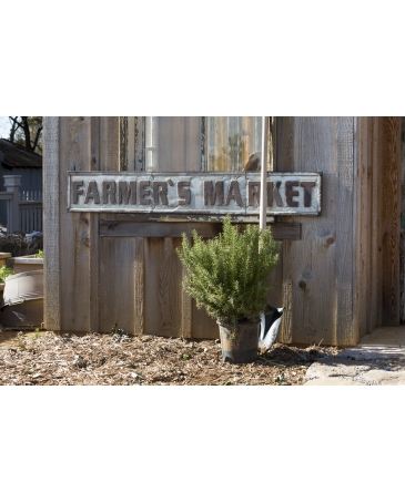 Park Hill® Farmers Market Sign