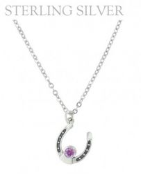 Montana Silversmiths® Ladies' February Birthstone Neck